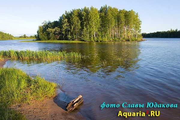 на Вытегорском водохранилище