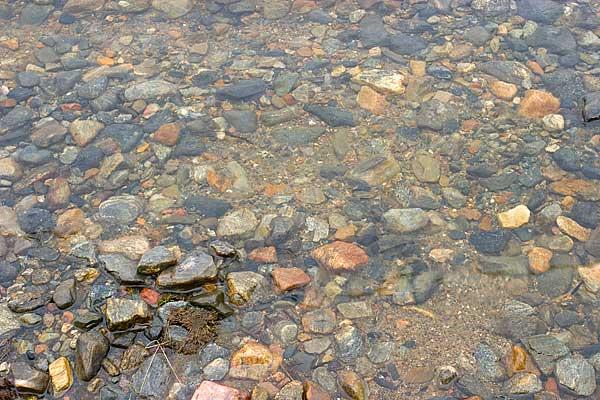 а вот вполне аквариумный грунт с берега озера Имандра. мешочек такого грунта я привез с собой.