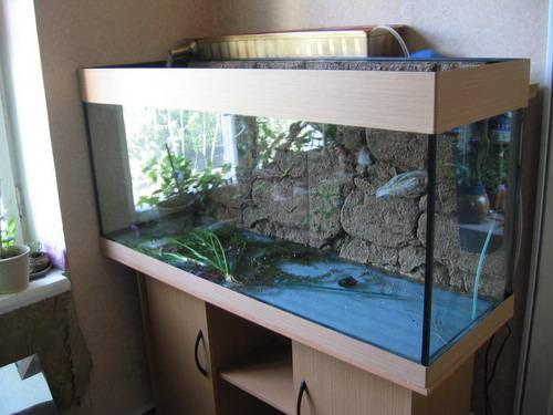 установке аквариум+фильтр.