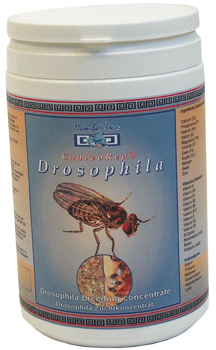 Namiba® ´s CanivoRep® Drosphila -Zuchtkonzentrat für Fruchtfliegen & Springschwanzfutter