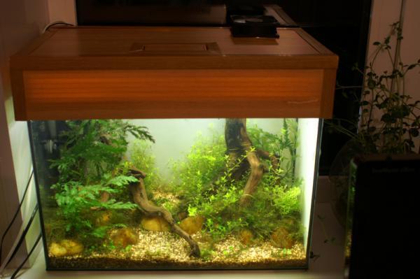 Галогеновый светильник для аквариума своими руками