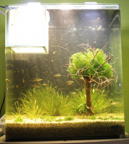 Аквариум освещение для растений своими руками 59