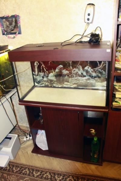 аквариум1